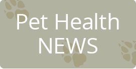 Pet Health News Articles