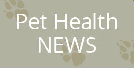 Pet Health News Articles